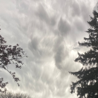 Derecho: A Storm Out of Nowhere